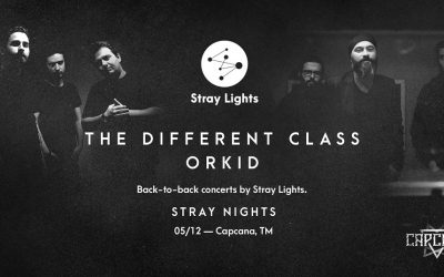 The Different Class și Orkid -primul eveniment Stray Nights din Timișoara